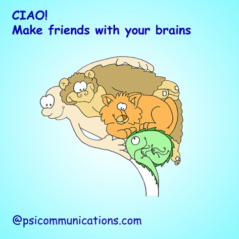 The human brain, for PSI Communications